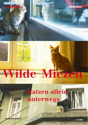 Wilde Miezen – Katzen allein unterwegs
